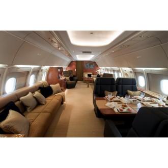Аренда частного самолета Airbus 318 Elite
