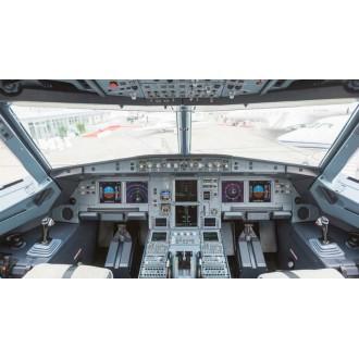 Аренда частного самолета Airbus A319 CJ