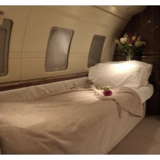 Аренда частного самолета Bombardier Challenger 601