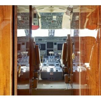 Аренда частного самолета Gulfstream GV